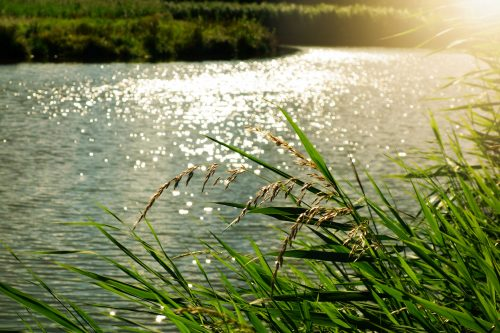 Hidup Bagai Bentangan Sungai